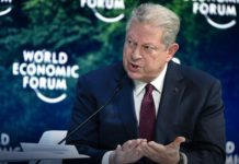 Al Gore - World Economic Forum