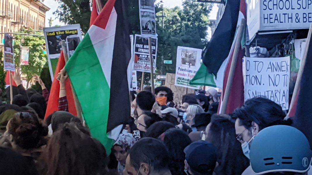 Anti-Israel, Pro-Palestinian Rally