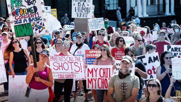 Rally At Massachusetts State House Against Mandatory Flu Vaccine